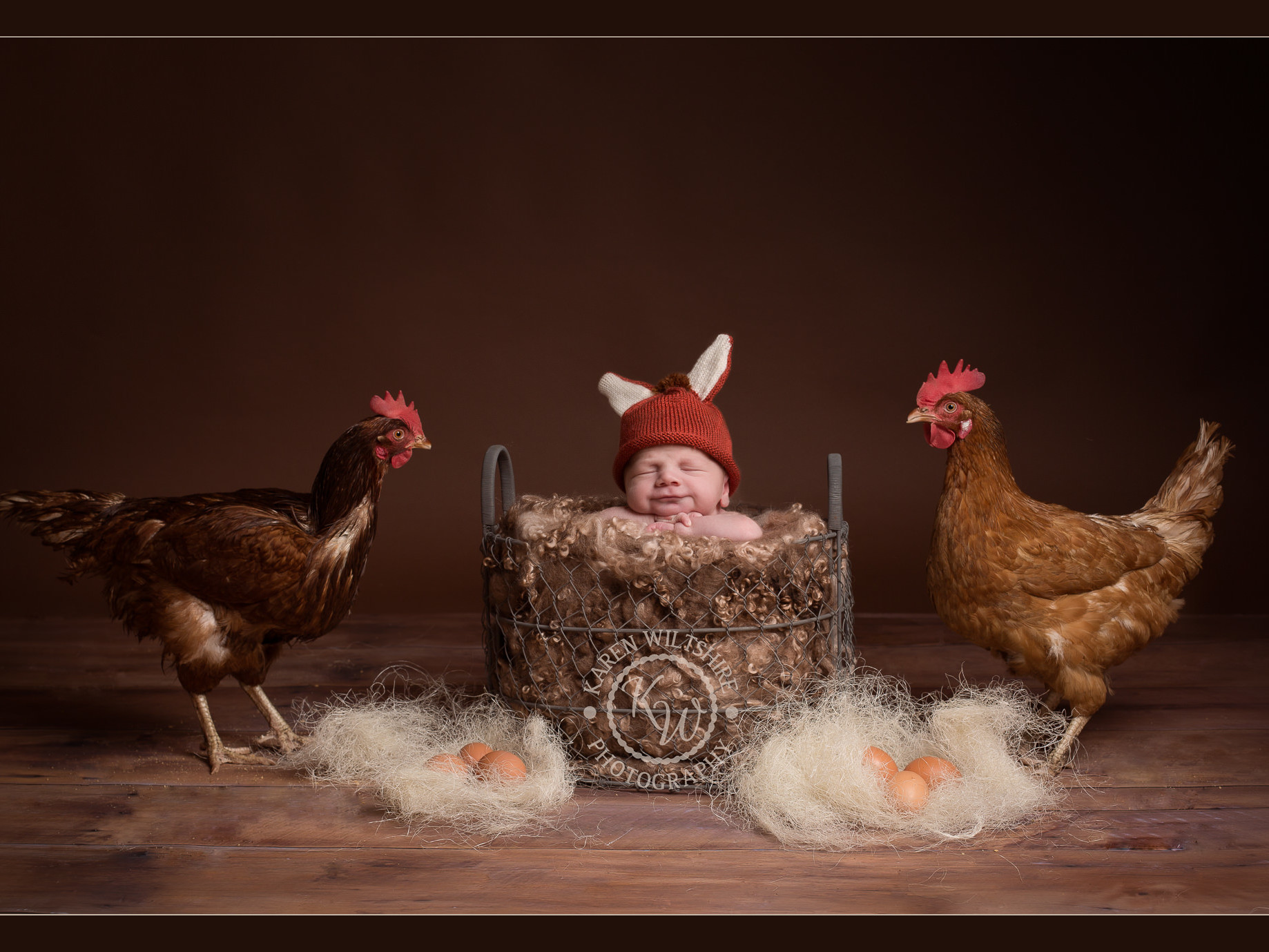 chickens looking at a newborn baby