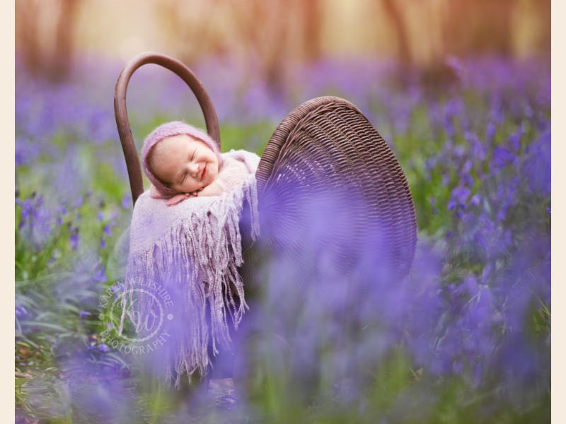 Baby in wicker pram sleeping in Bluebell woods