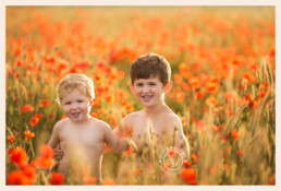 two young boys standing in a field of poppies