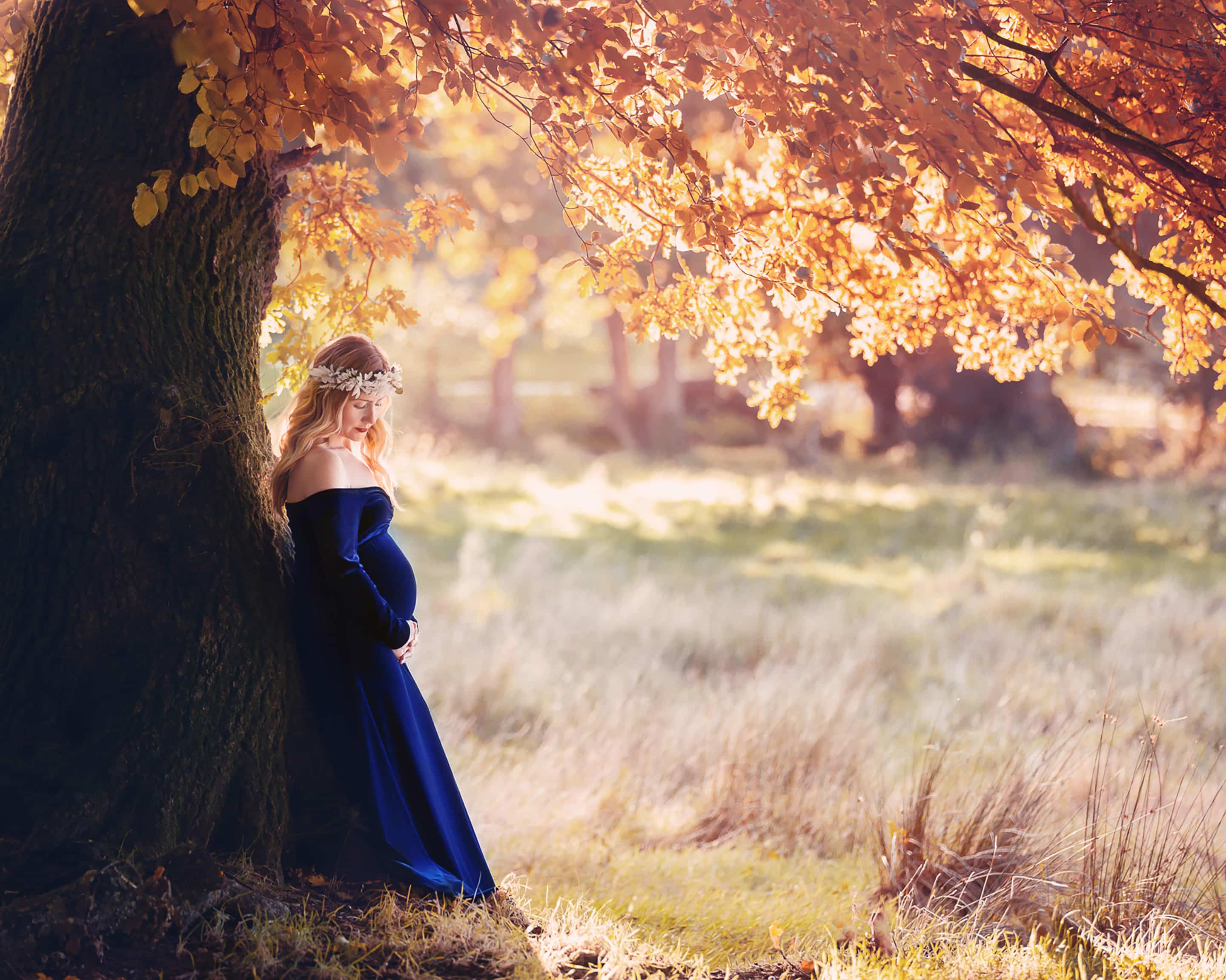 Pregnant lady in blue velvet dress under a tree