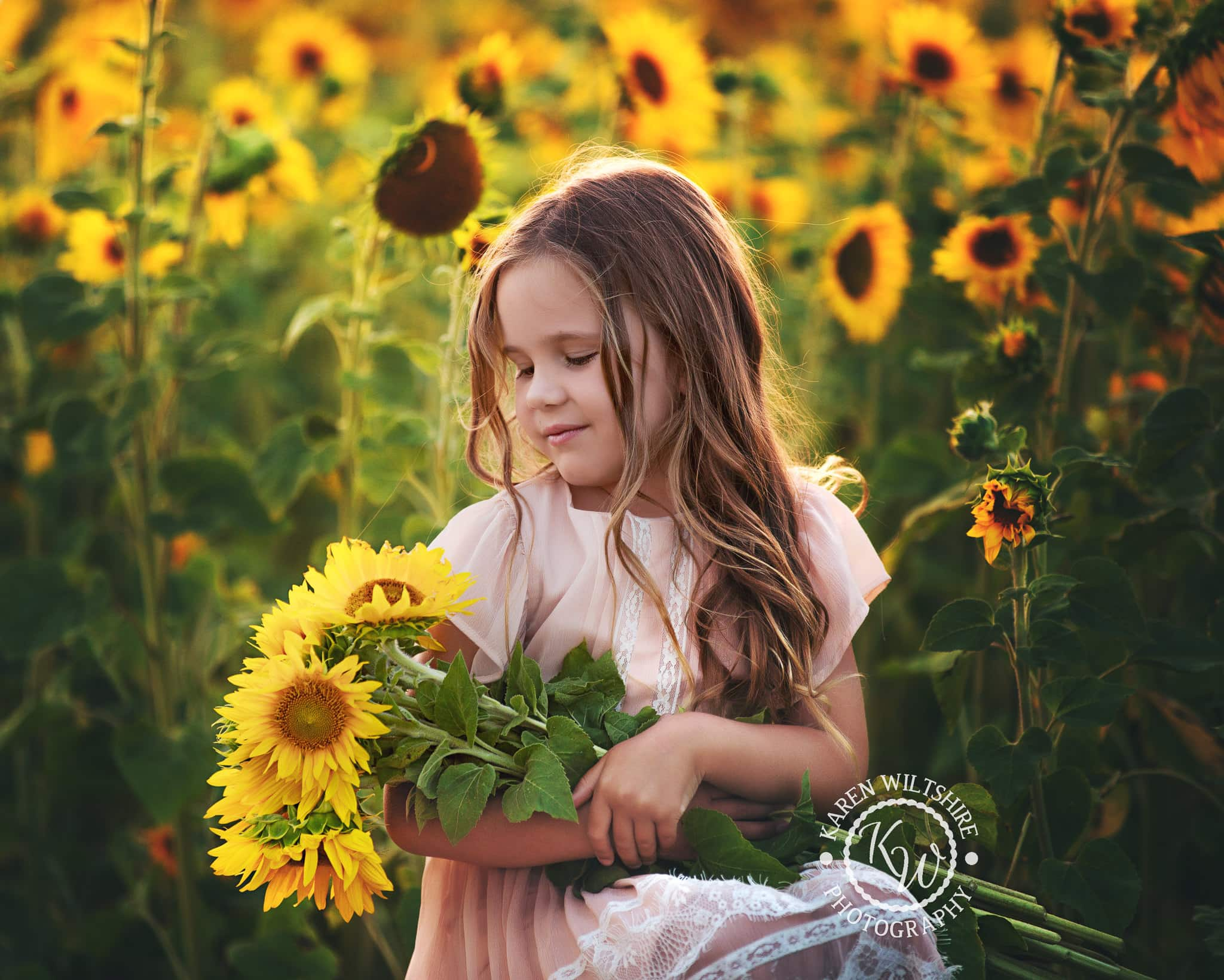 Young girl in Sunflower field